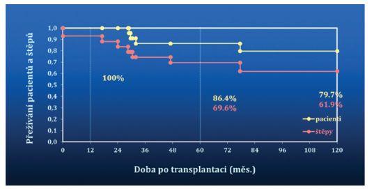 Kumulativní přežívání pacientů a štěpů (Kaplan-Meier, N=28) Graph 1: Cummulative patients and grafts survival (Kaplan-Meier, N=28)