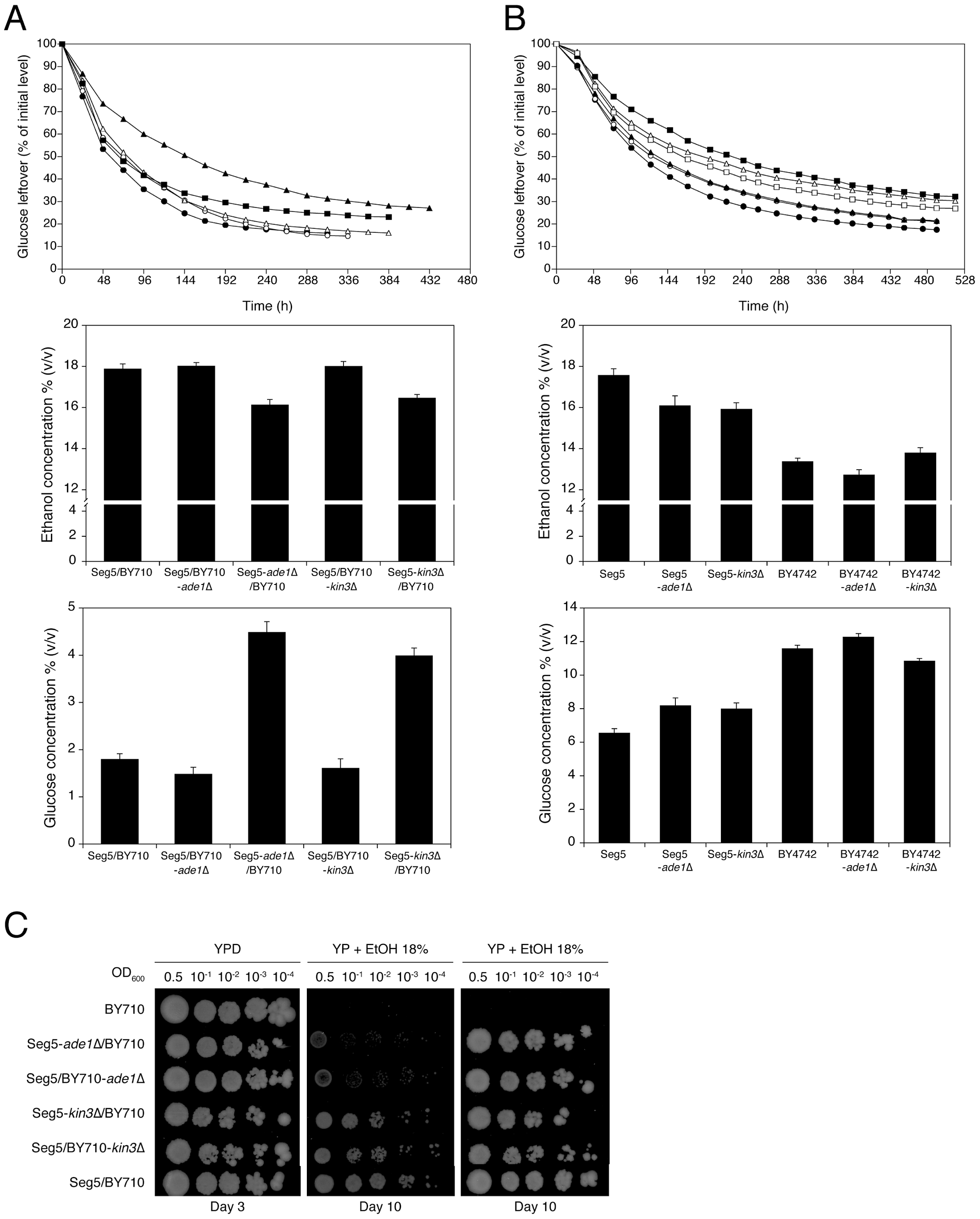 Single gene RHA and loss of function assessment for the causative genes <i>ADE1</i> and <i>KIN3</i> in QTL2.