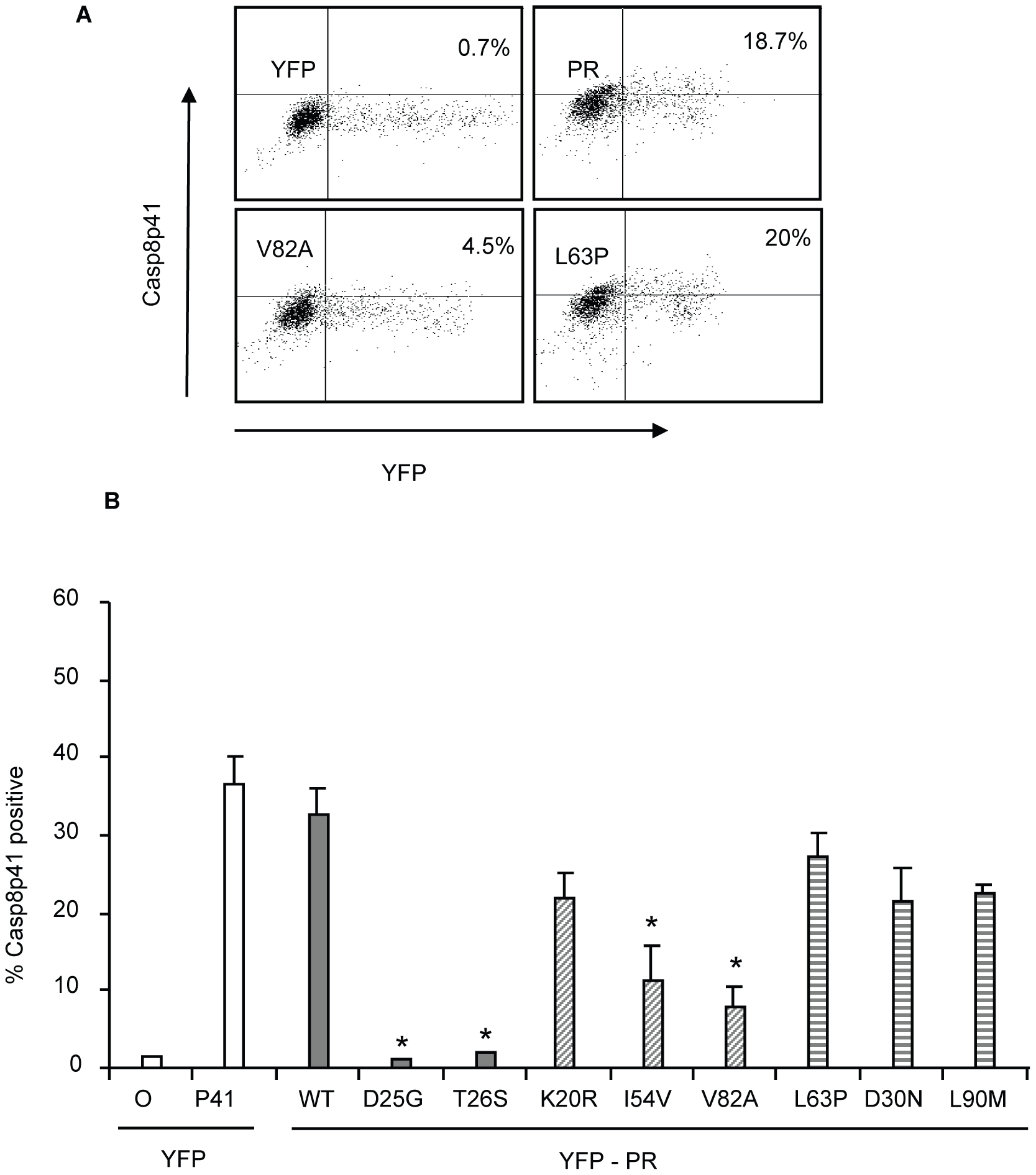 Reduced HIV-1PR-induced cell death is associated with reduced Casp8p41 production.