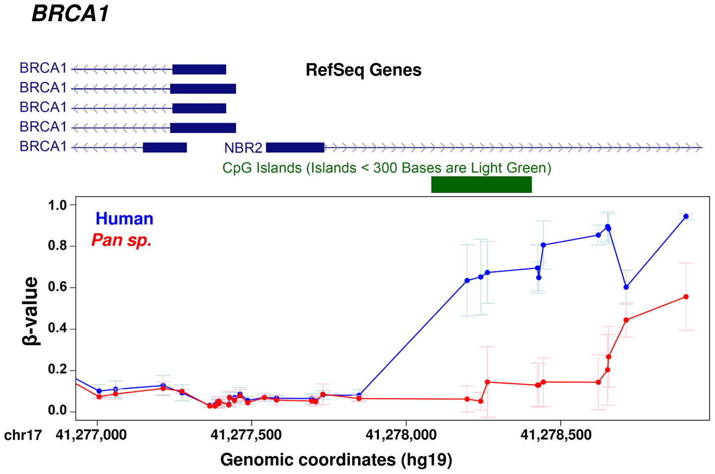 Example gene showing methylation differences between human and chimpanzee at promoter level.