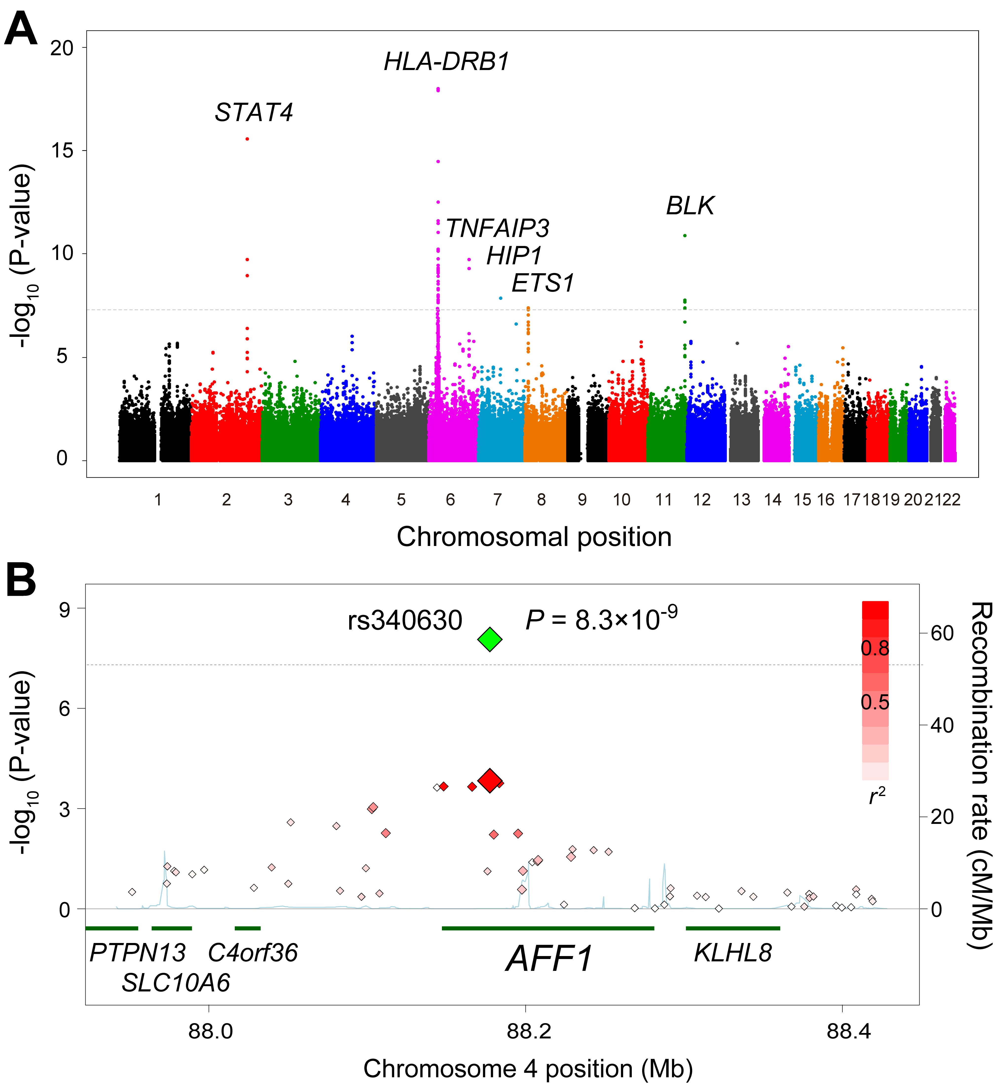 Associations of the <i>AFF1</i> locus with SLE.