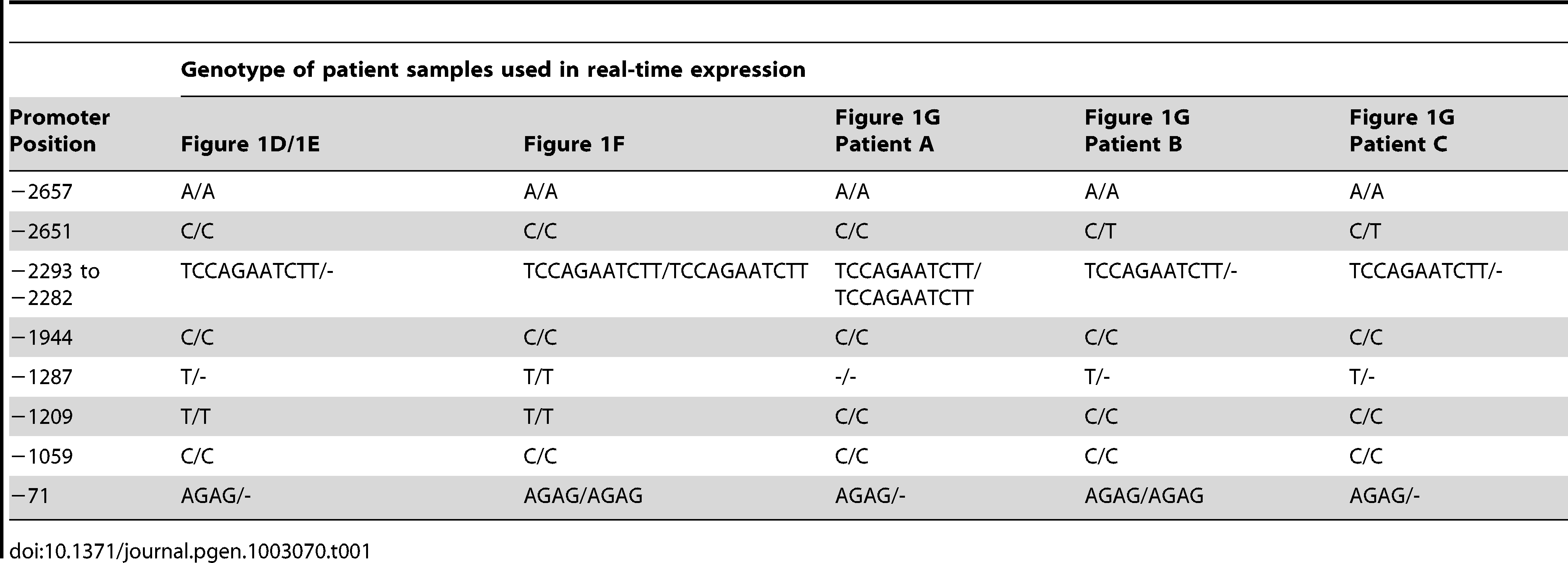 Genotypes of BEEC patient samples used in real-time expression experiments.