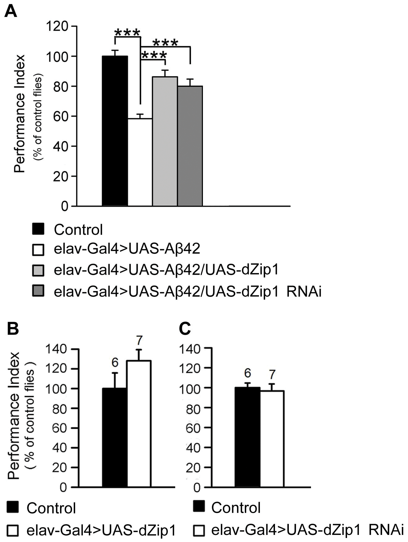 <i>dZip1</i> expression modulation ameliorates the Aβ42-induced immediate memory loss.