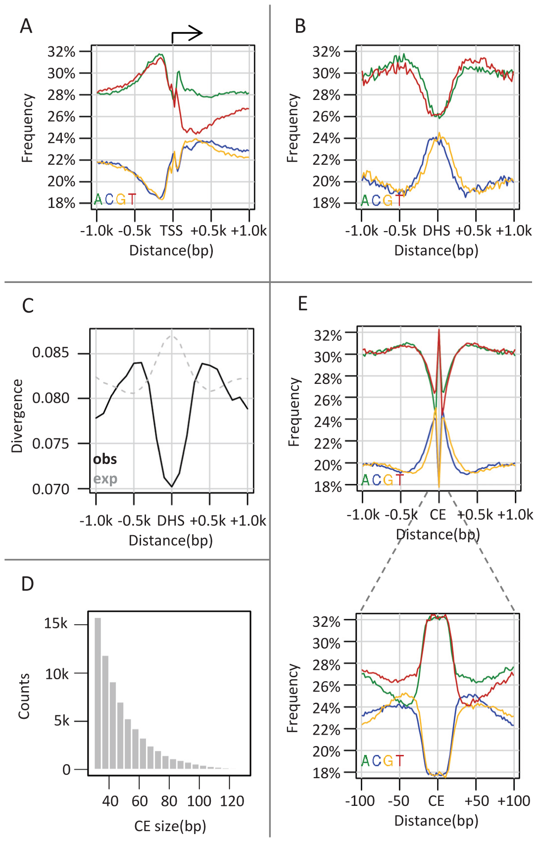Punctuated GC elevation around conserved elements in flies.