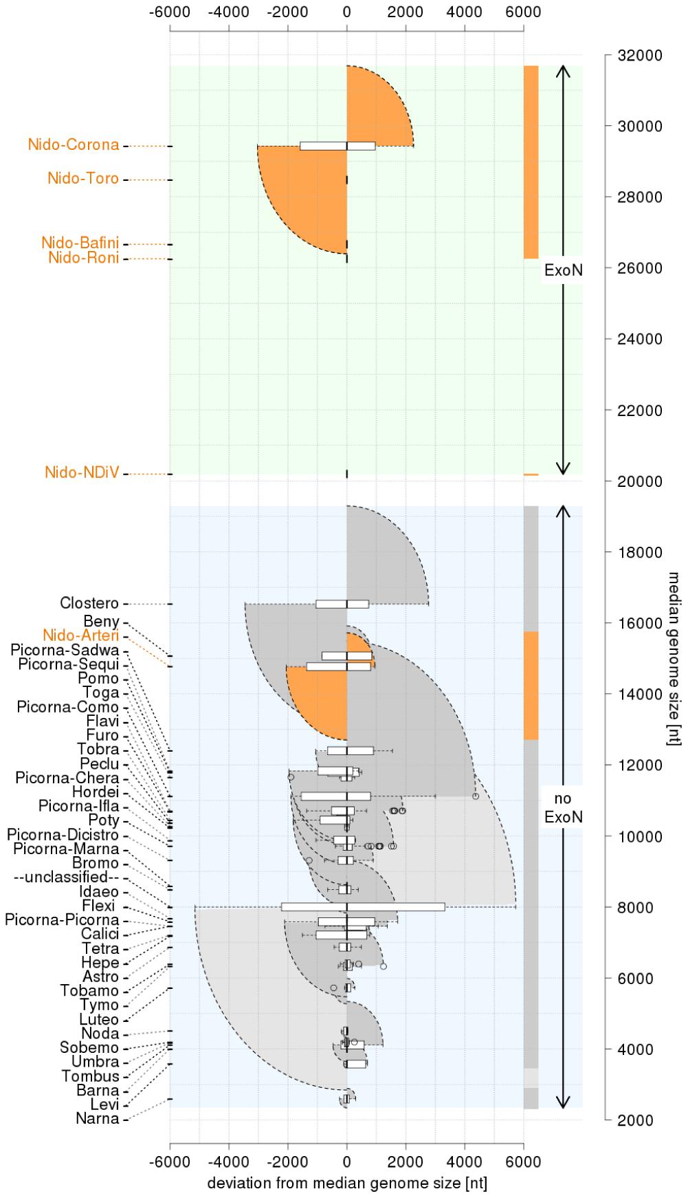 Distribution of positive-sense single-stranded RNA virus genome sizes.