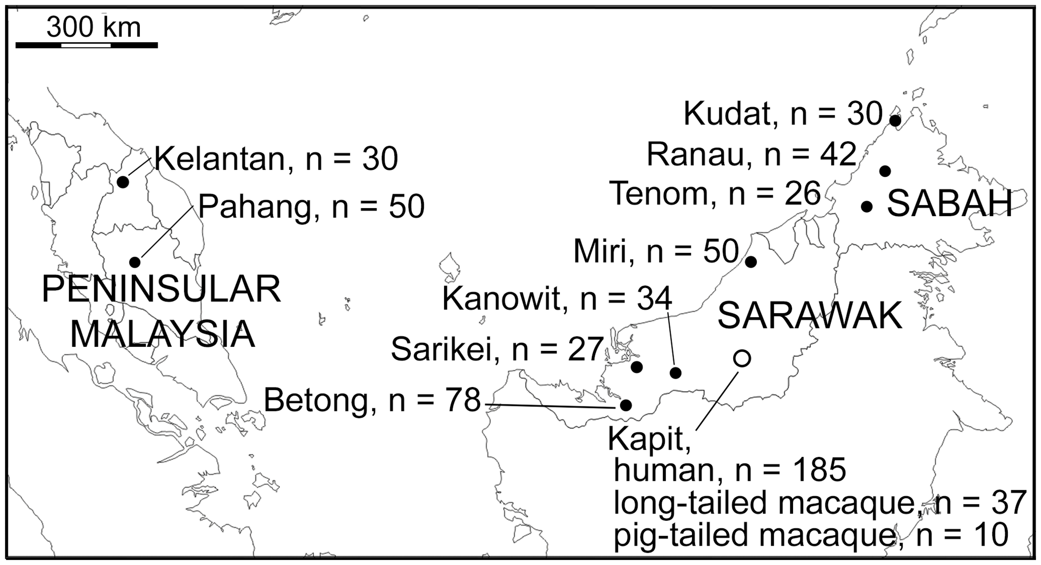 Map of sampling locations of 599 <i>P</i>. <i>knowlesi</i> infections genotyped in this study.