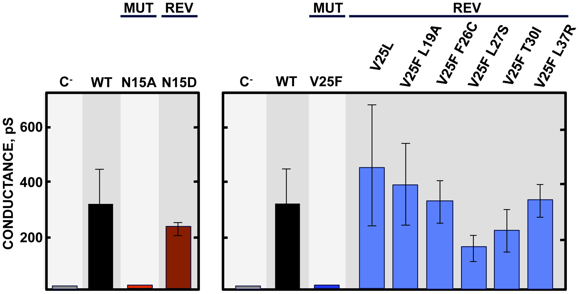 E protein IC activity of the rSARS-CoV-EIC<sup>−</sup> evolved variants.