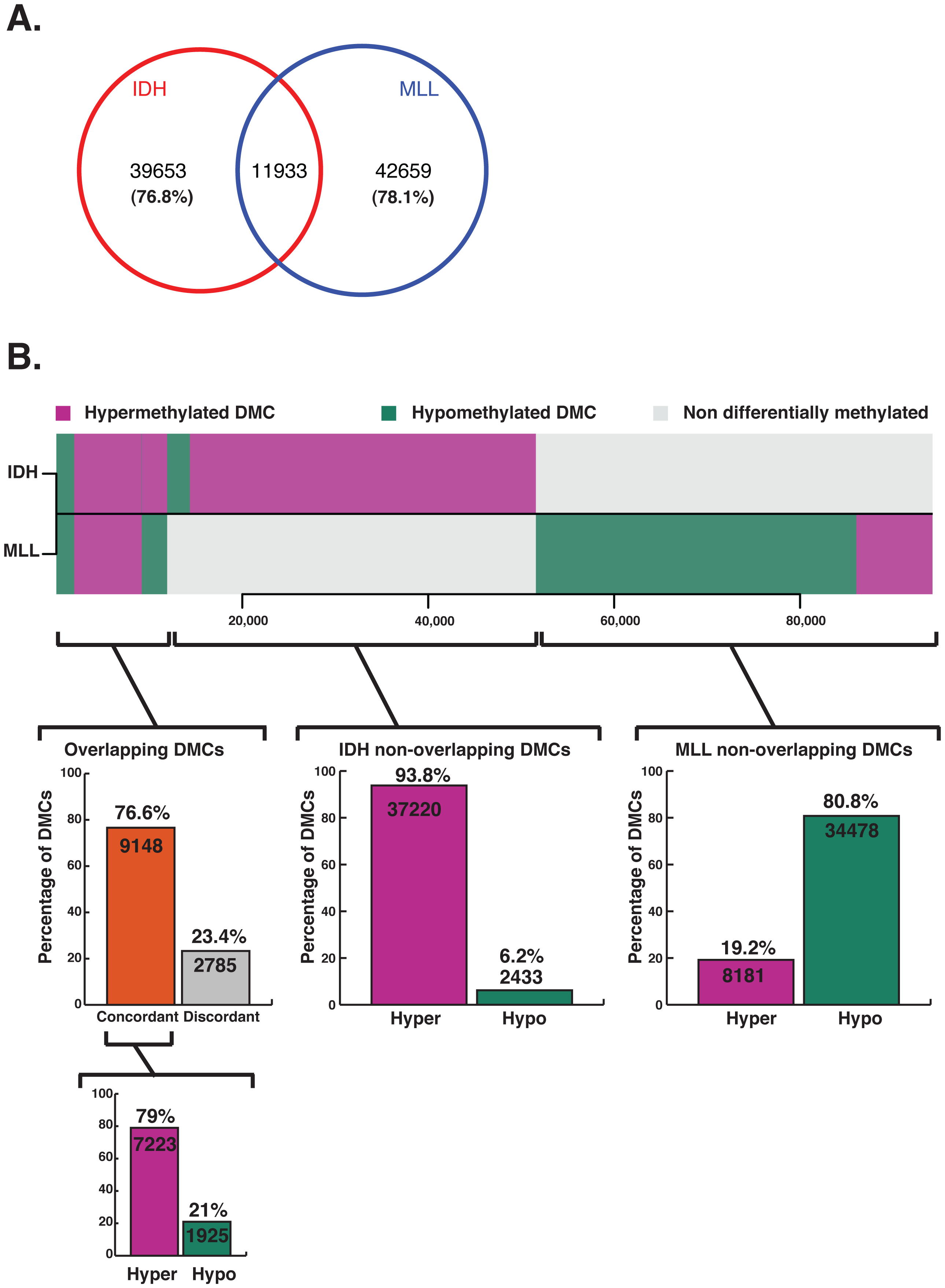 Aberrant methylation targets a minimally overlapping set of CpGs in IDH-mut and MLLr AMLs.