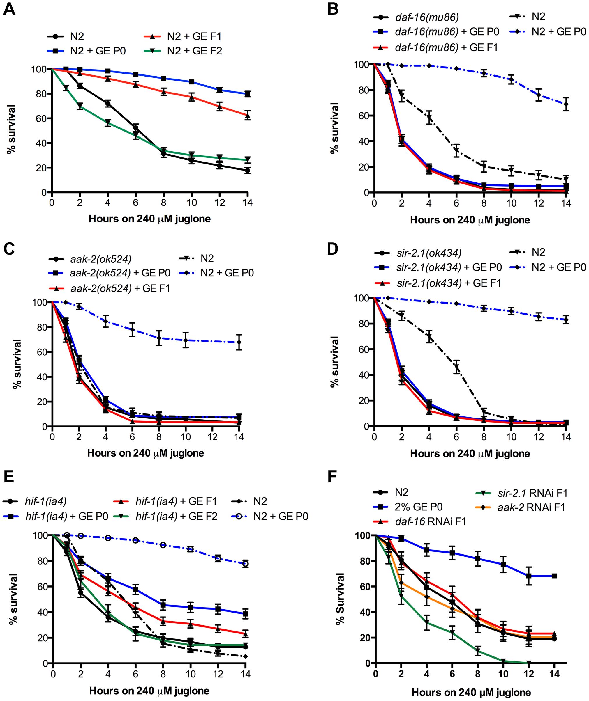 Transgenerational inheritance of resistance to oxidative stress.