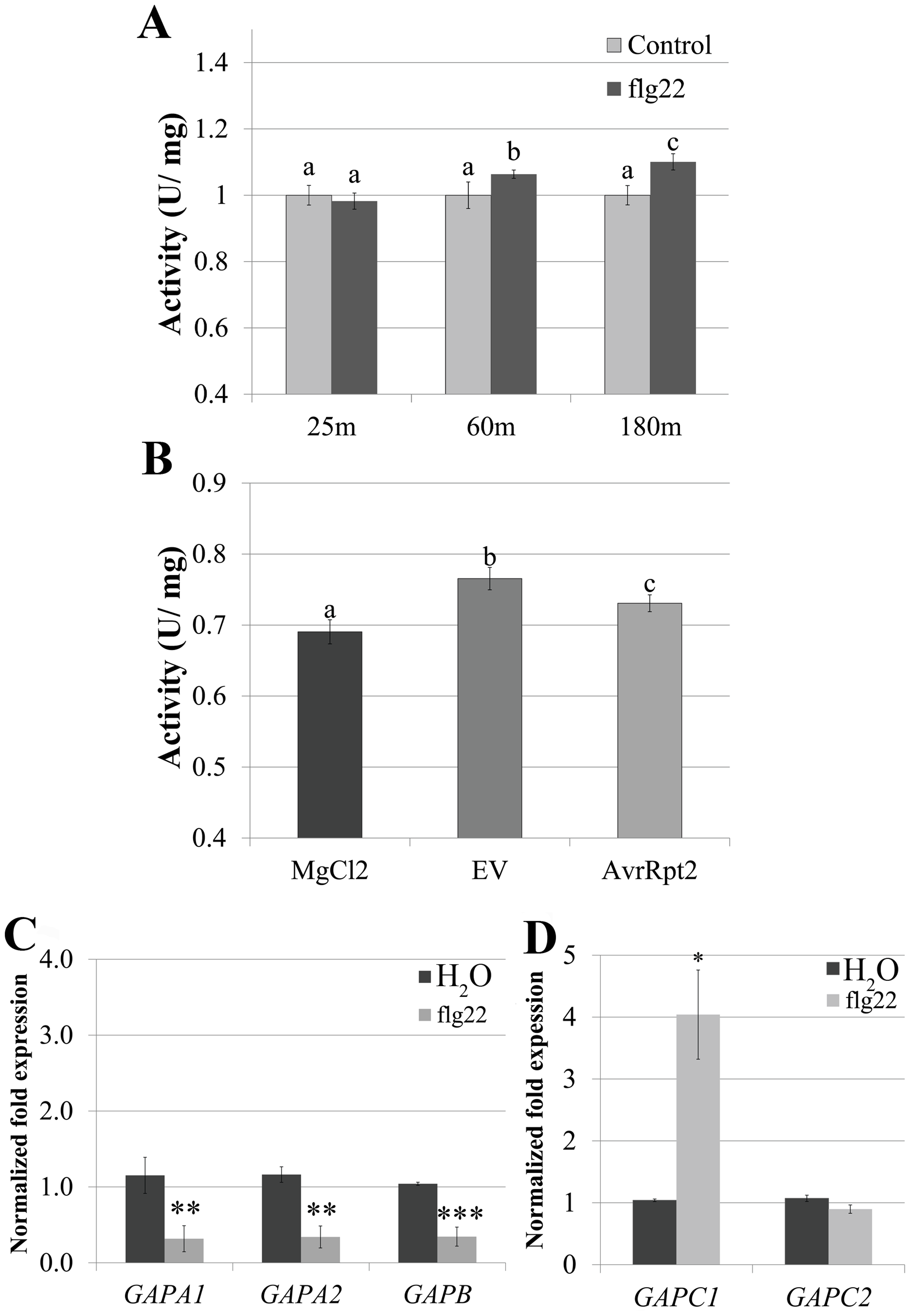 <i>GAPDH</i> transcription and enzymatic activity dynamically change during immune responses.