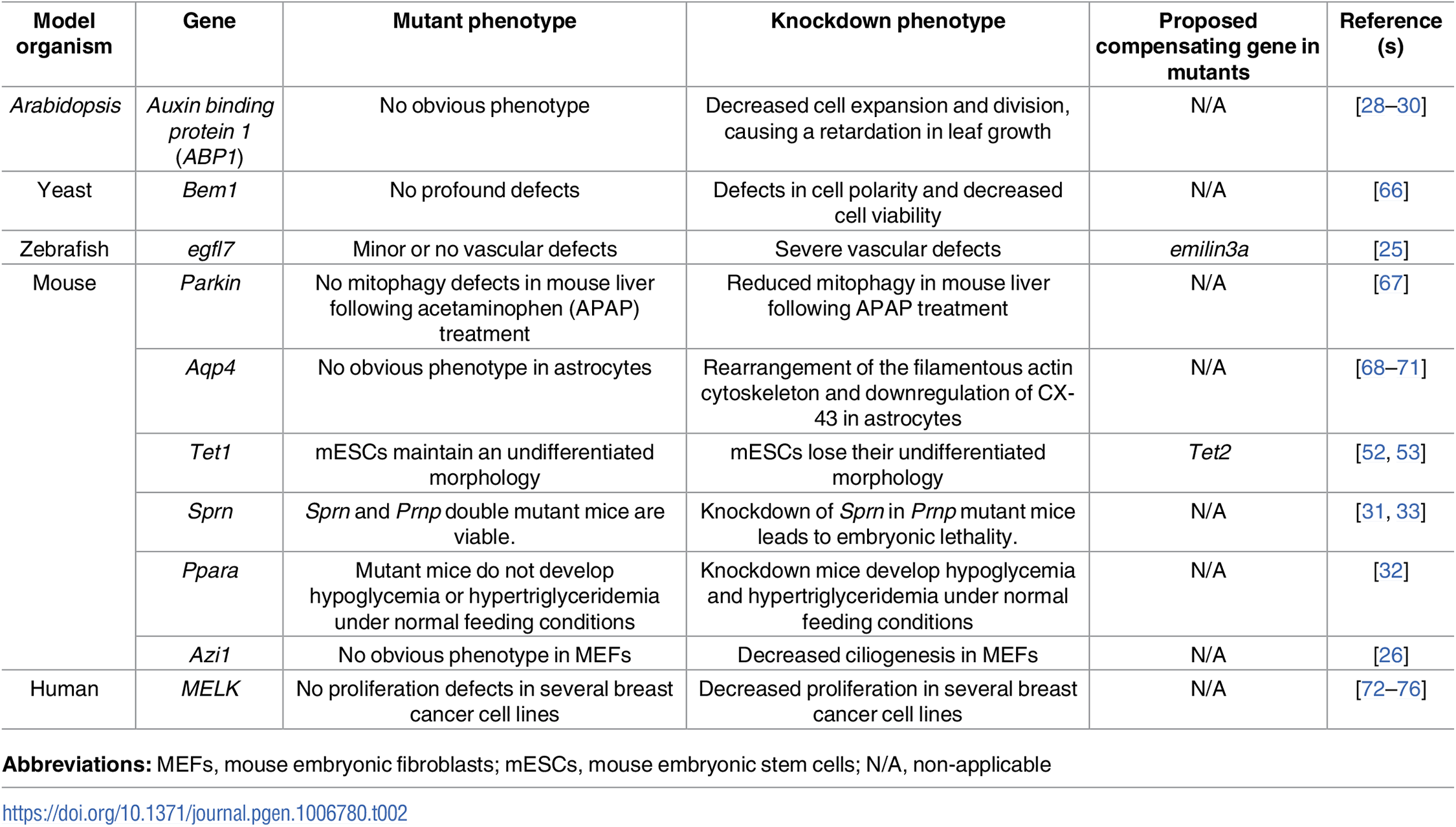 Examples of discrepancies between mutant and knockdown phenotypes.