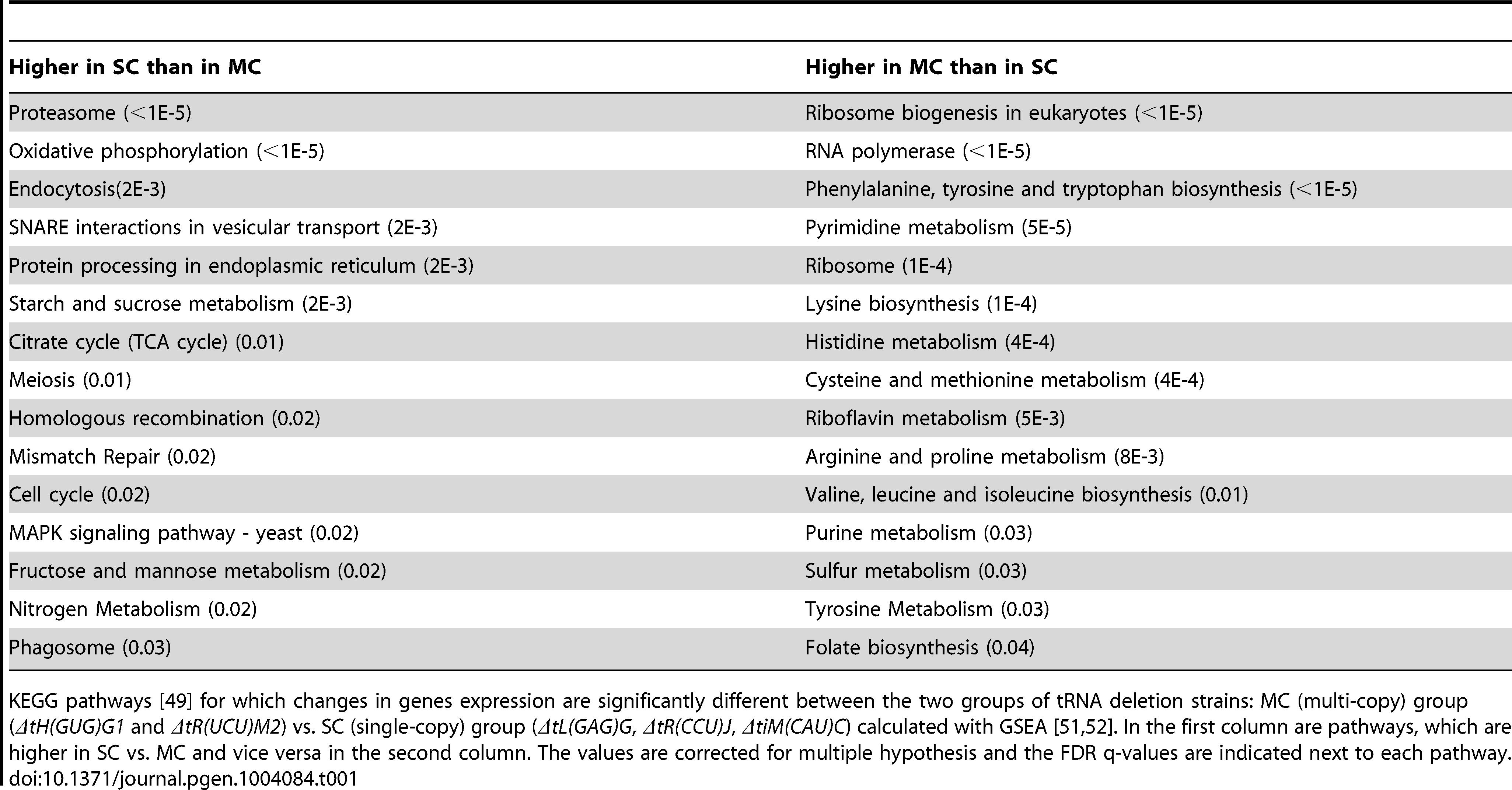 KEGG pathways differentiating between tRNA deletion sets.
