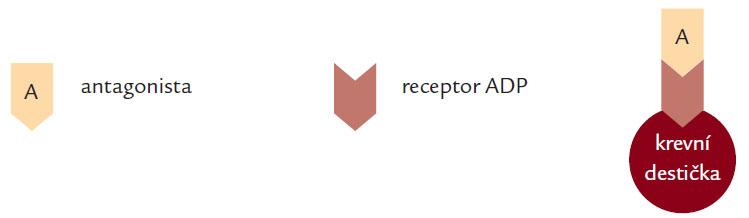 Blokace receptoru pro ADP.
