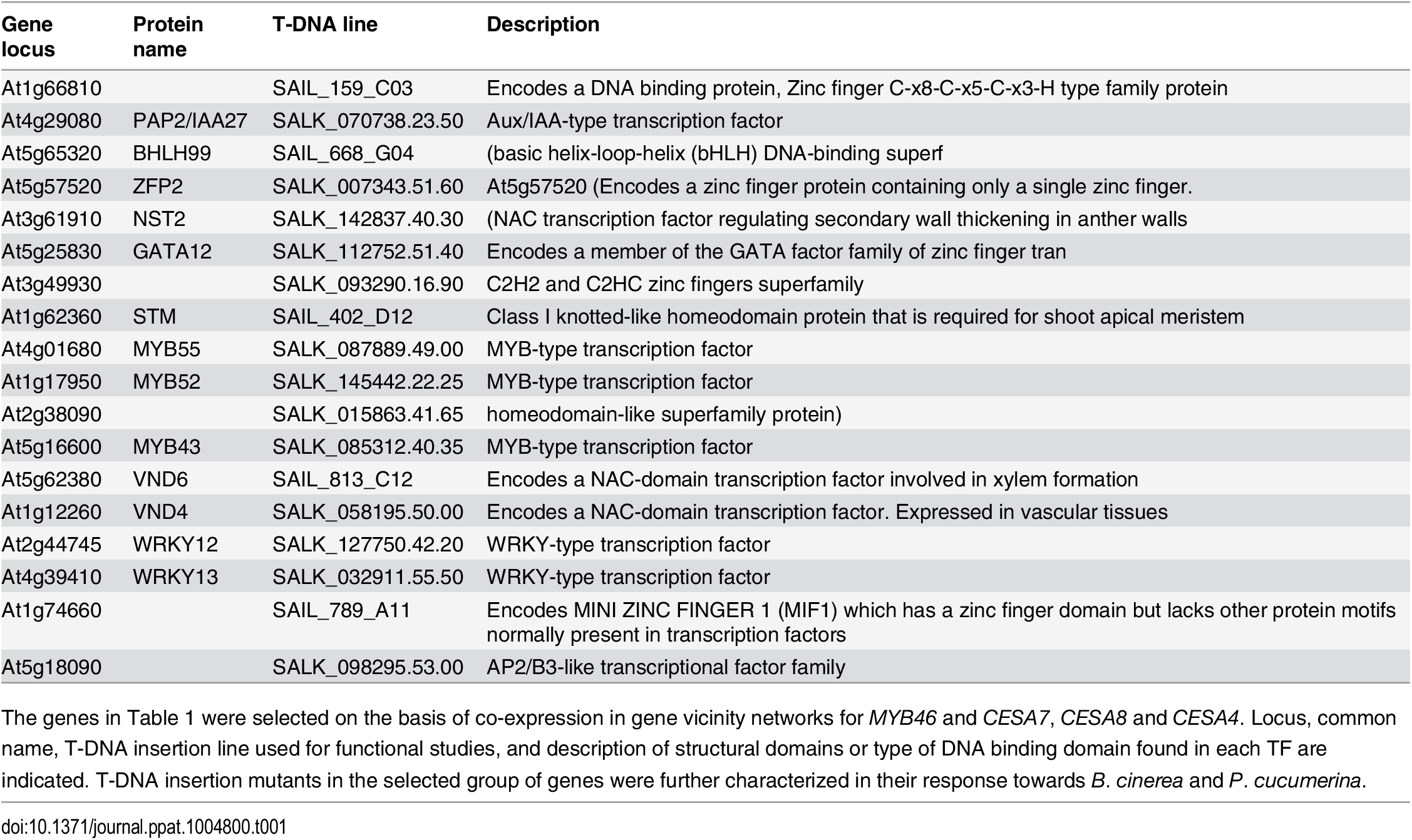 List of genes encoding the selected TFs.