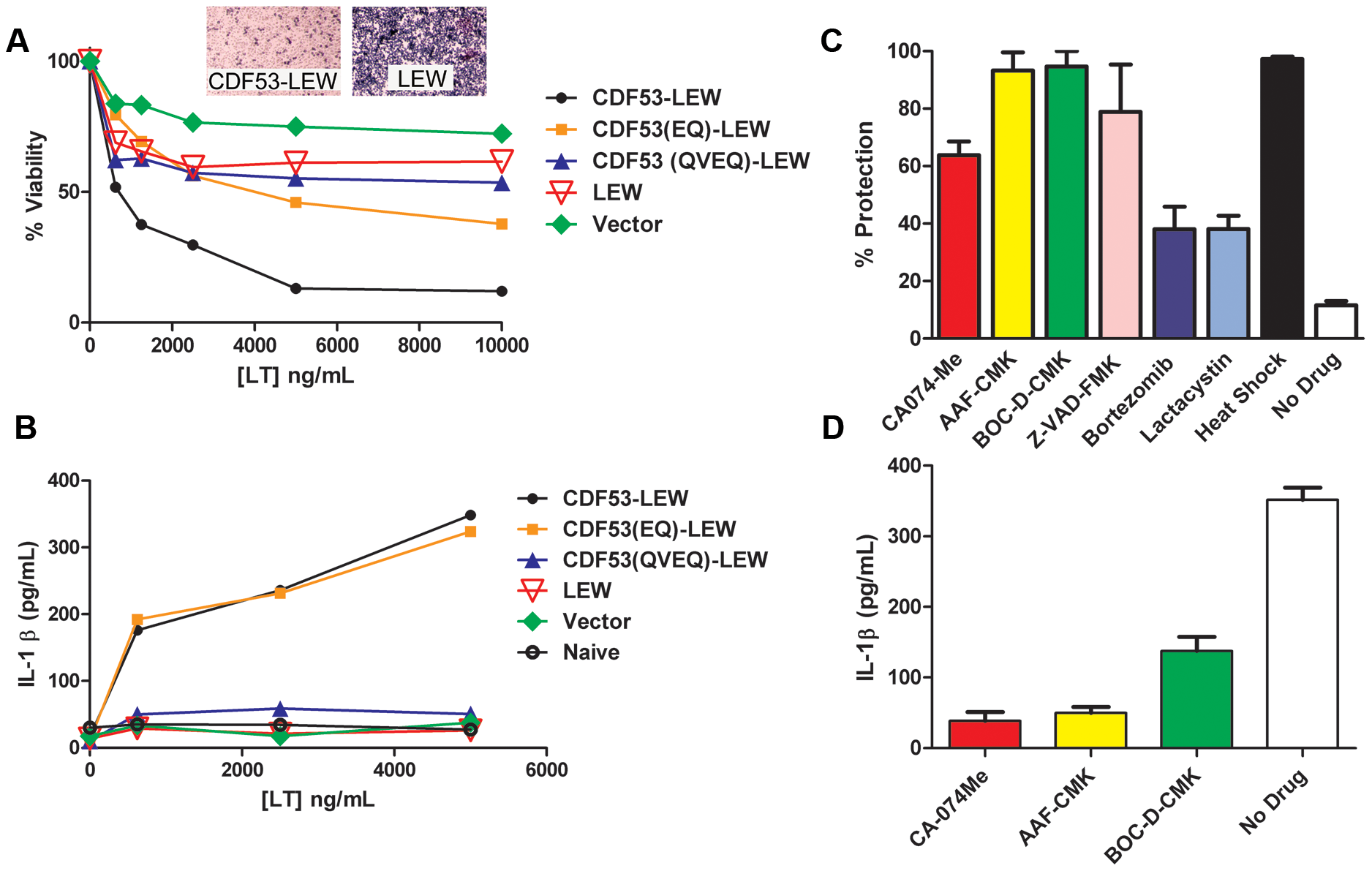 LT effects on cells expressing rNlrp1 constructs.