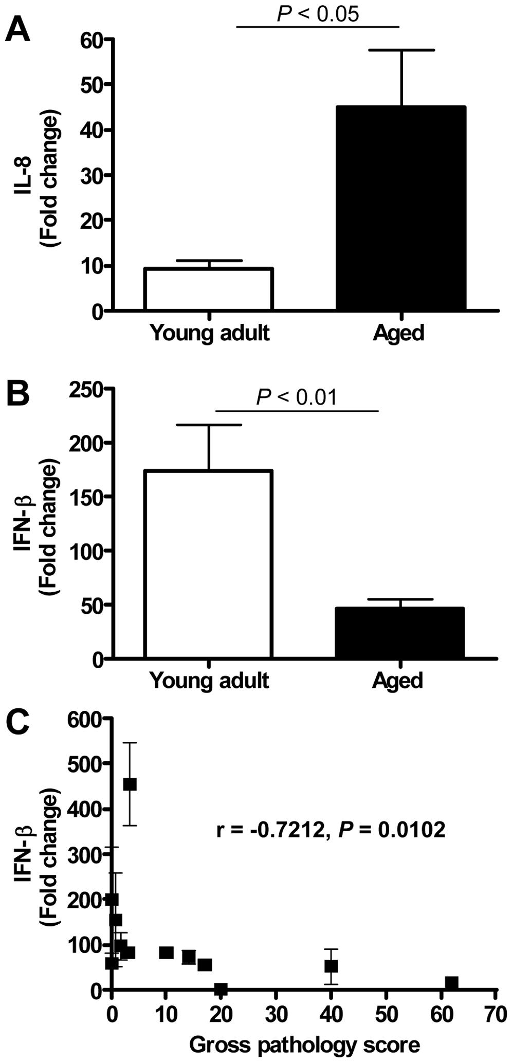 Quantitative RT-PCR confirmation of IFN-β mRNA levels.