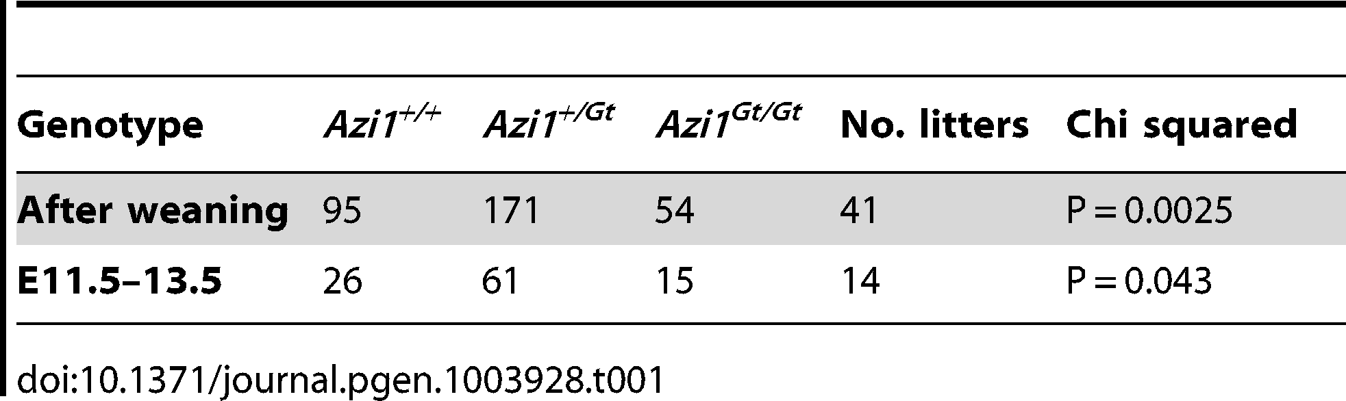 Genotypes of animals born from <i>Azi1<sup>+/Gt</sup></i> x <i>Azi1<sup>+/Gt</sup></i> matings.