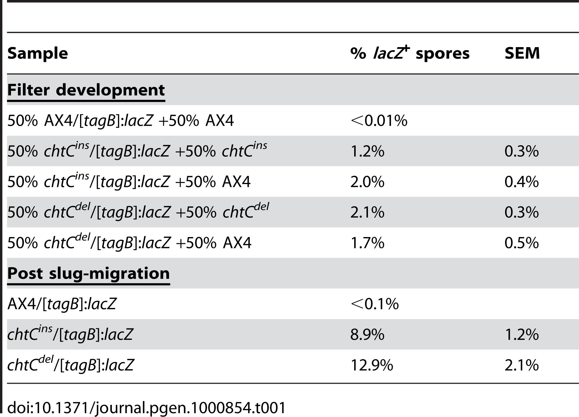 <i>chtC</i> spores have a prestalk history.