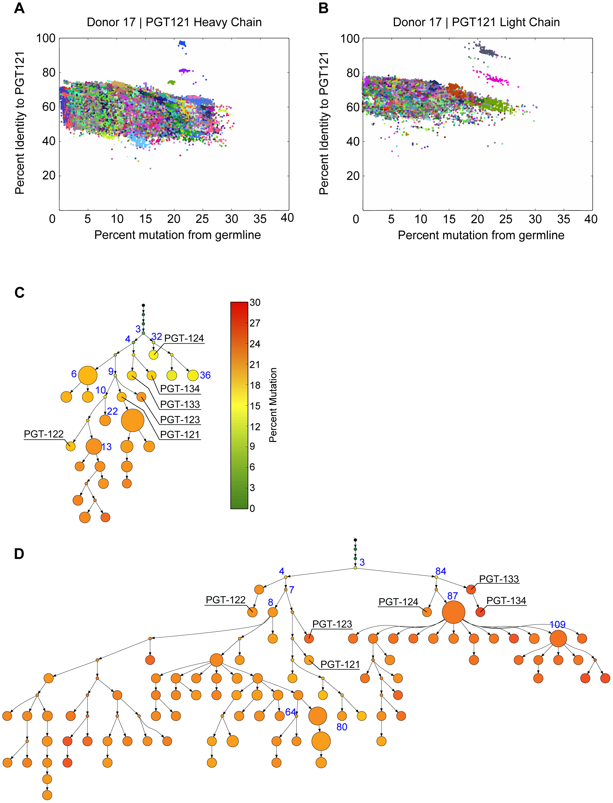 PGT121–123 variants identified by deep sequencing were used to build phylogenetic trees using ImmuniTree.