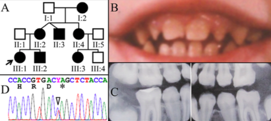 Figure 3. 