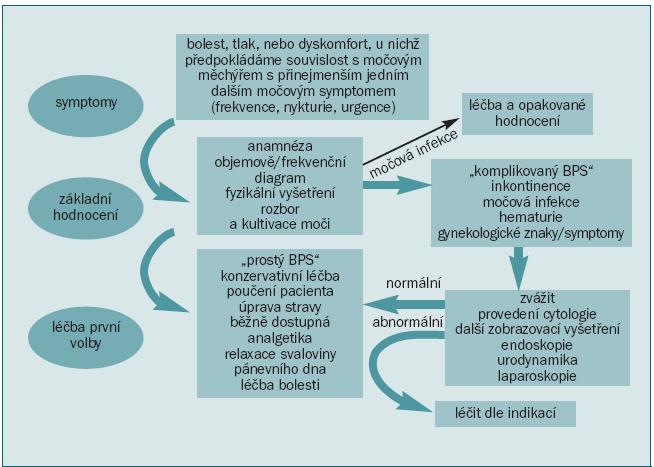Schéma 11. Syndrom bolesti v močovém měchýři.