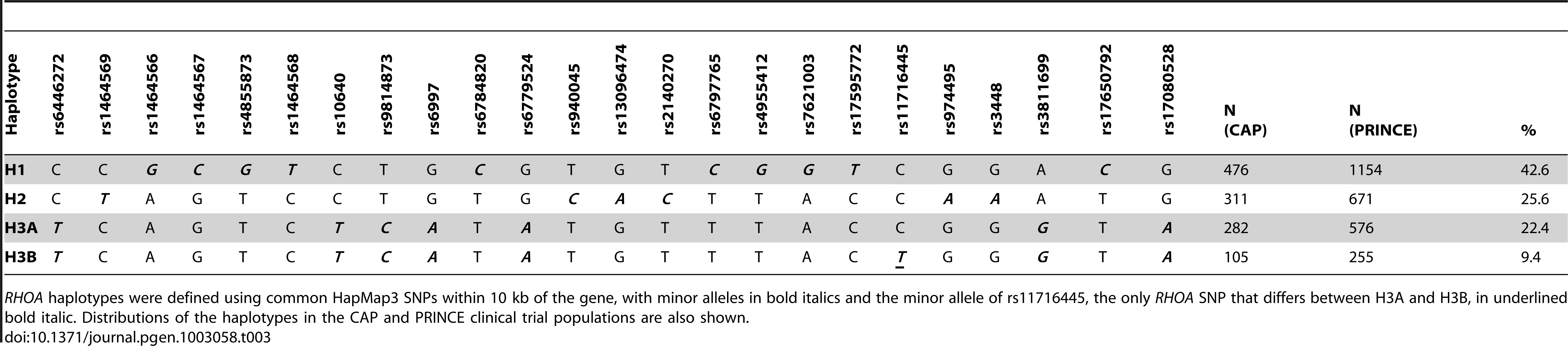 <i>RHOA</i> haplotype definition.