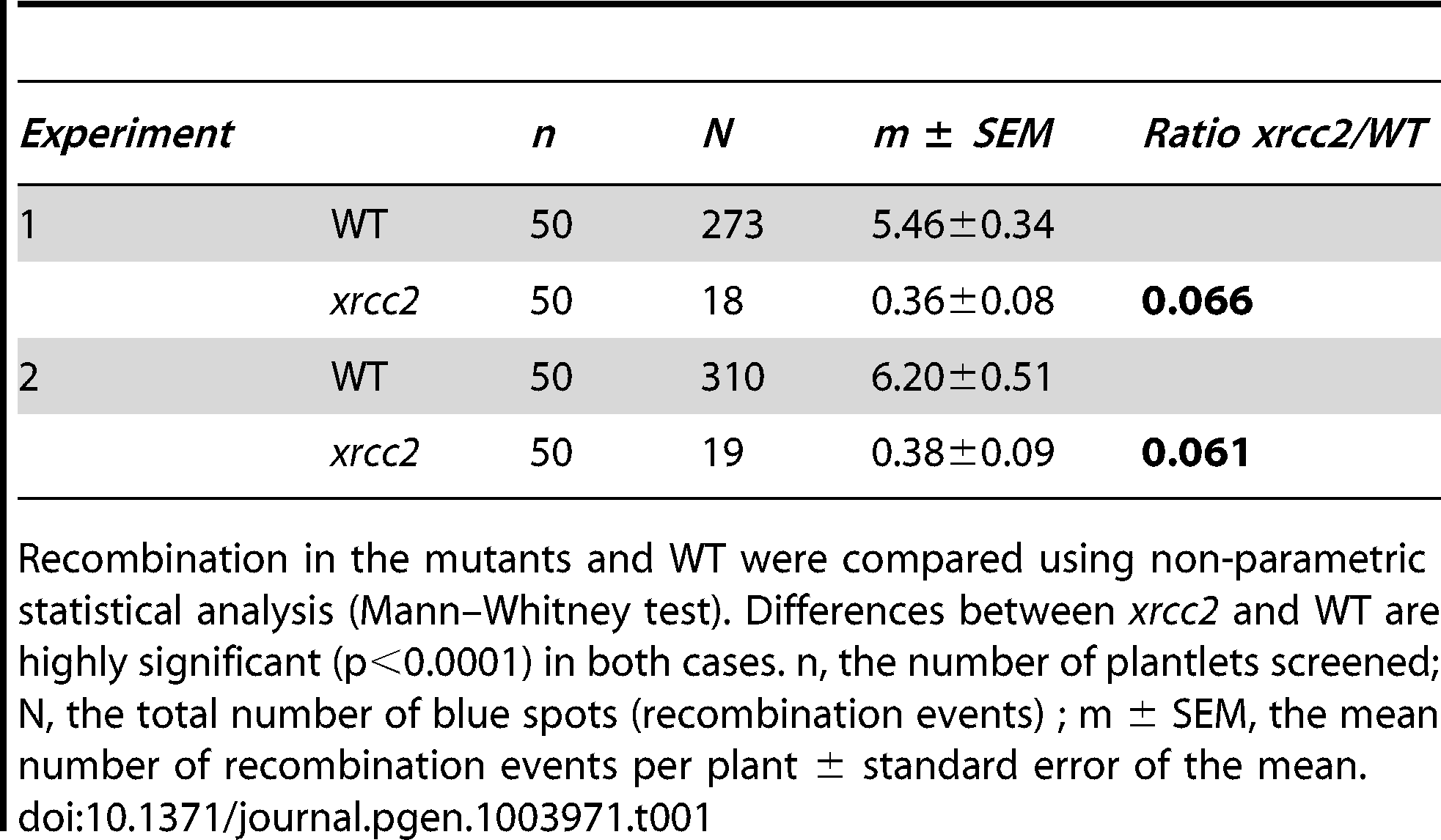 Spontaneous DGU.US recombination in <i>xrcc2</i> mutant and in wild-type plants.