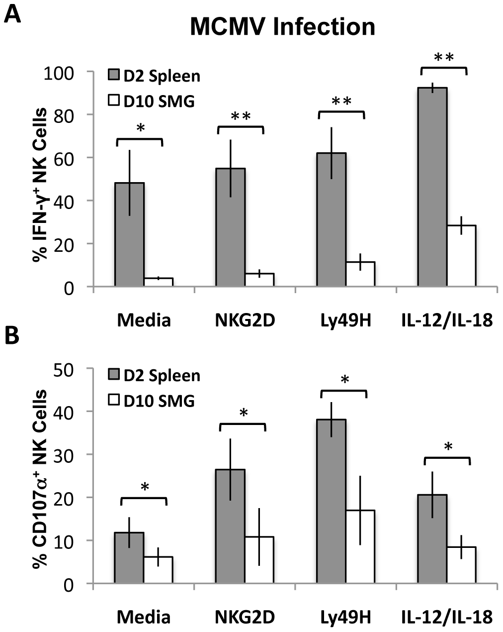 MCMV activated SMG NK cells have impaired IFN-γ and degranulation compared with splenic NK cells.