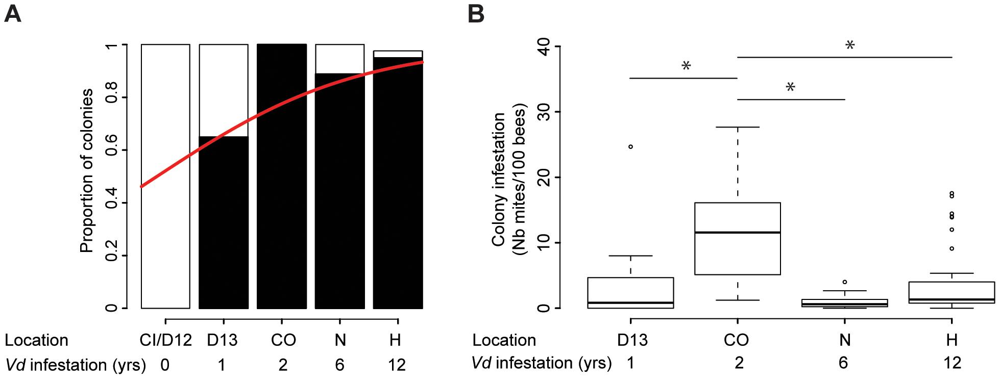 Quantitative analysis of the phoretic <i>Varroa</i> infestation.