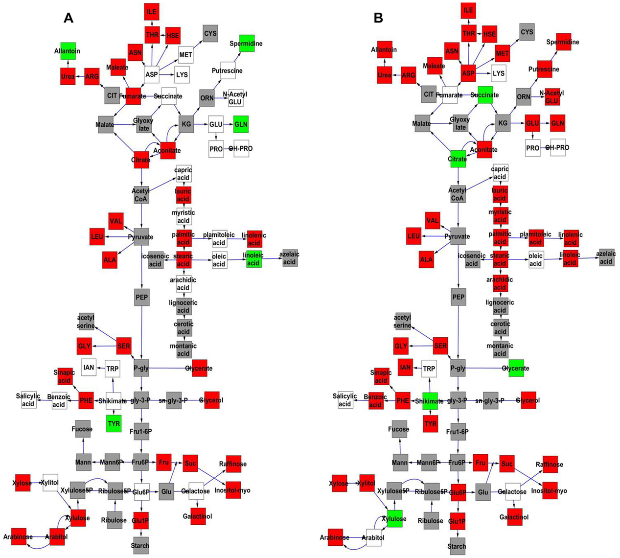 Comparative effect of cytoplasmic genomic variation on Metabolite average and CV.