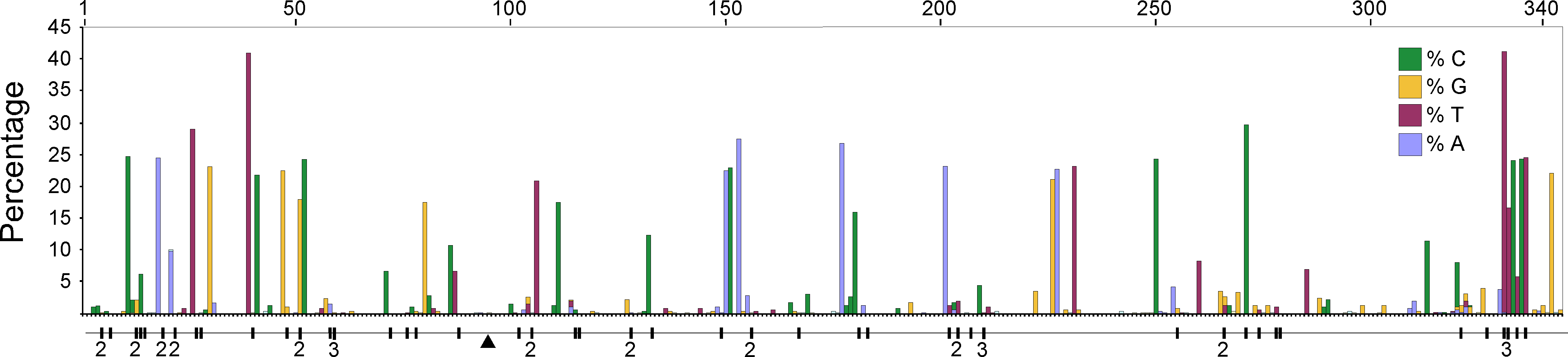 A plot of the frequency of the non-majority nucleotide bases across the 344 bp region of the HVR I for all adult penguins examined in this study.