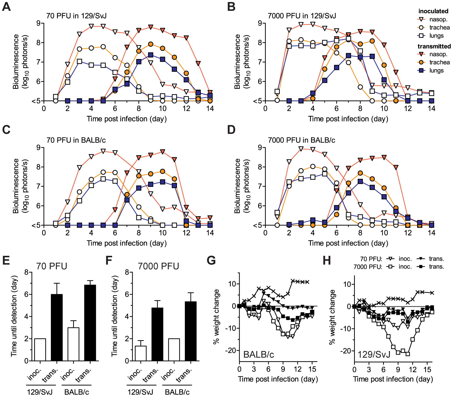 Timing and tissue-tropic spread of Sendai virus infection after contact transmission.