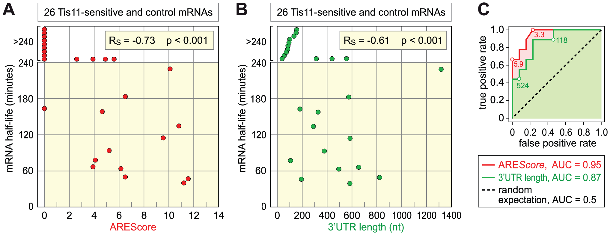 Relationship among ARE<i>Score</i>, 3′UTR length, and mRNA half-lives.