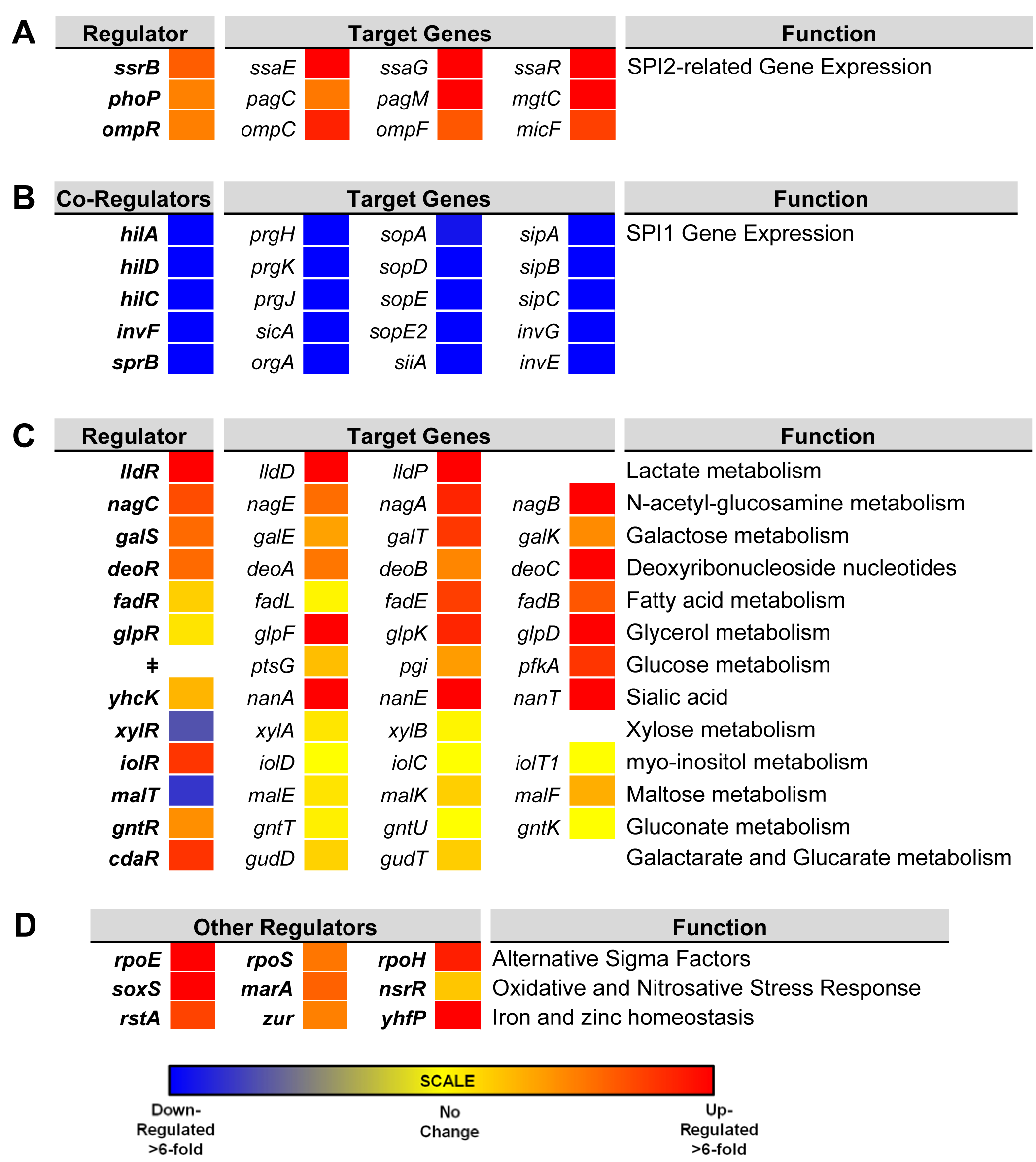 Relative intra-macrophage expression of <i>Salmonella</i> transcription factors and selected target genes.