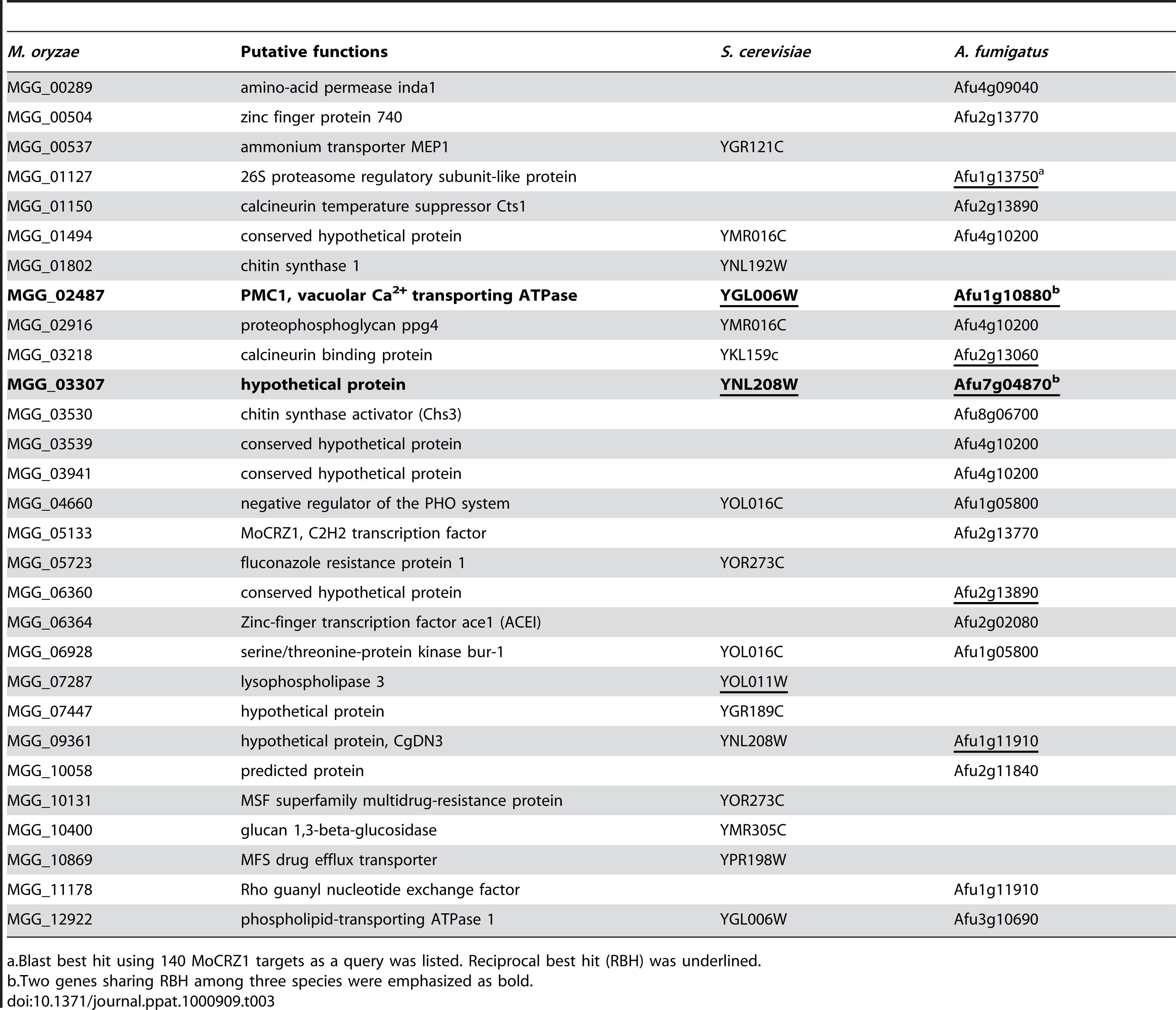 List of common genes regulated by calcium/calcineurin/CRZ1 across species.