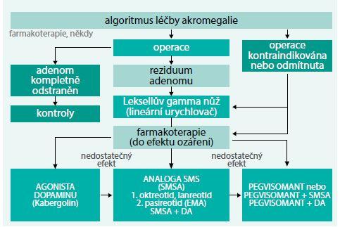 Schéma. Současný algoritmus léčby akromegalie v České republice