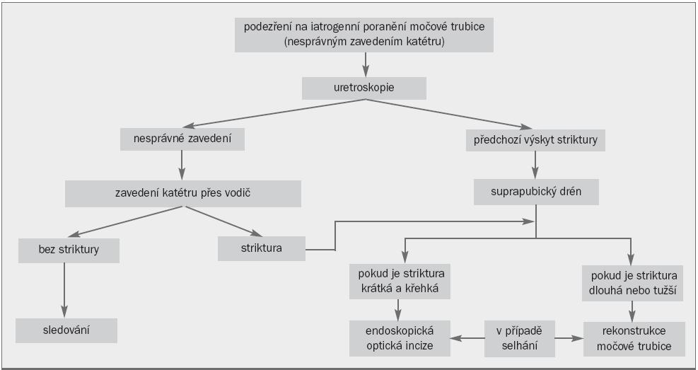 Algoritmus pro léčbu iatrogenního poranění močové trubice vyvolaného nesprávným zavedením katétru.