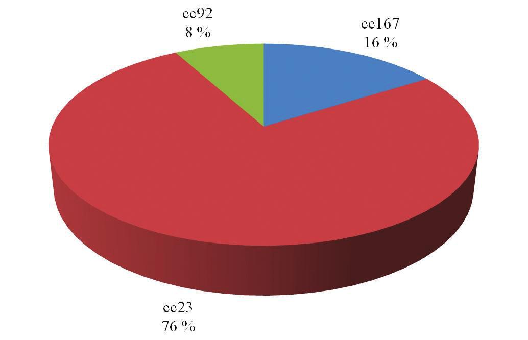 Zastoupení klonálních komplexů u izolátů N. meningitidis Y z invazivního meningokokového onemocnění v České republice za období 1971–2014 (květen), n = 25 Fig. 4. Clonal complex distribution of N. meningitidis Y isolates from IMD obtained in the Czech Republic in 1971–2014 (May), n = 25