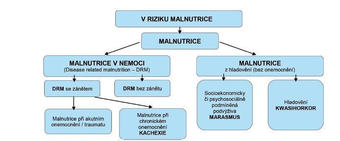 Schéma 2 Diagnostický strom klasifikace podvýživy založené na etiologických kritériích (7)