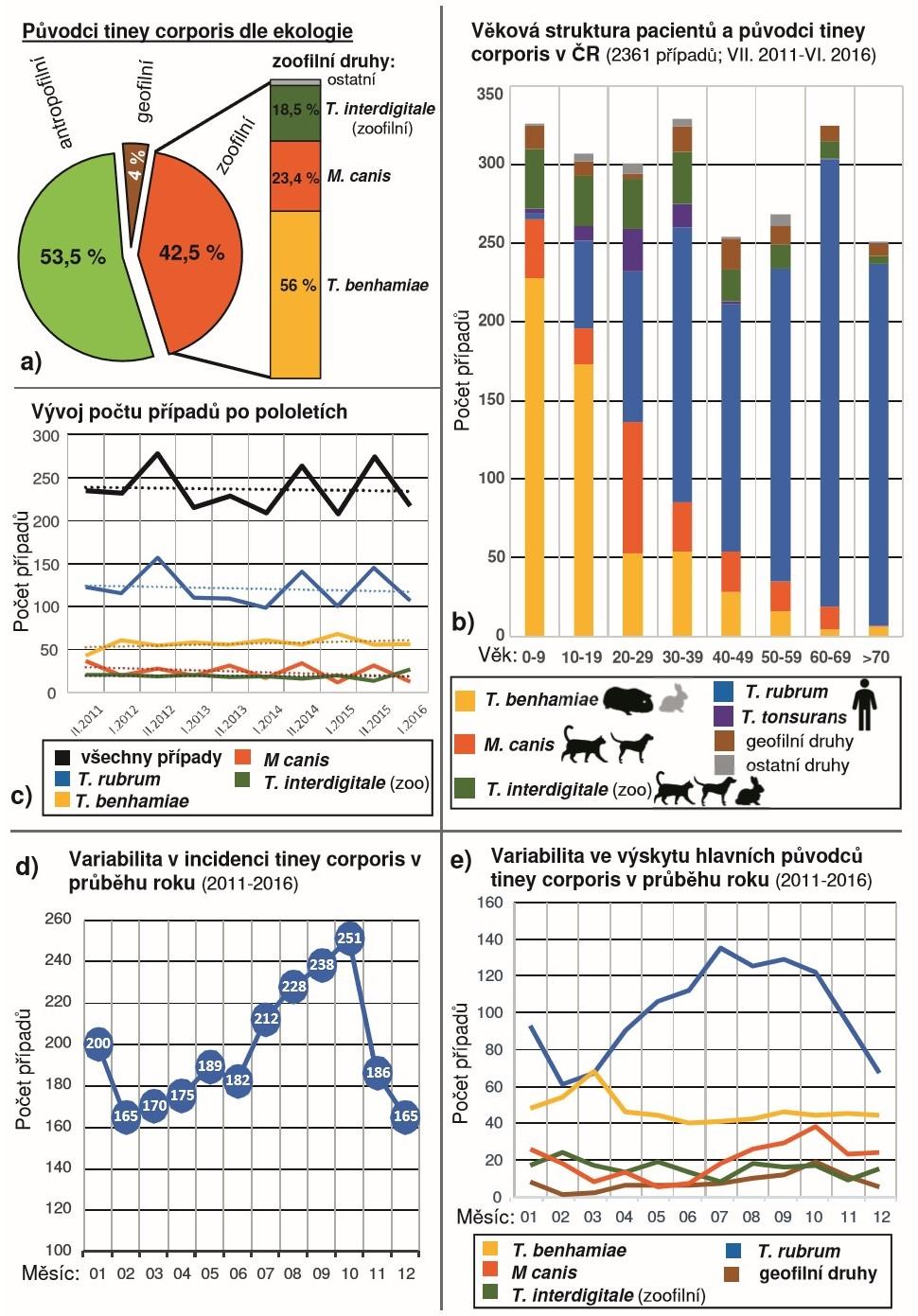Epidemiologická analýza 2361 případů tiney corporis diagnostikovaných během pětileté studie (VII. 2011-VI. 2016)