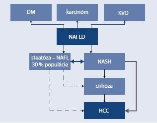 Schéma 2 | NAFLD a asociované stavy