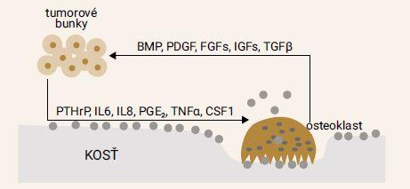 Schéma 4 | Protinádorový mechanizmus účinku bisfosfonátov
