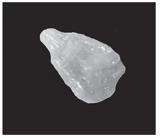 Fragment of analyzed renal stone (dimensions 2 x 1