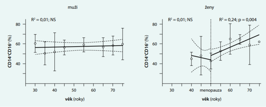 Obrázek 2. Vliv věku na poměr proinflamačních makrofágů ve viscerální tukové tkáni živých dárců ledvin (n = 52)