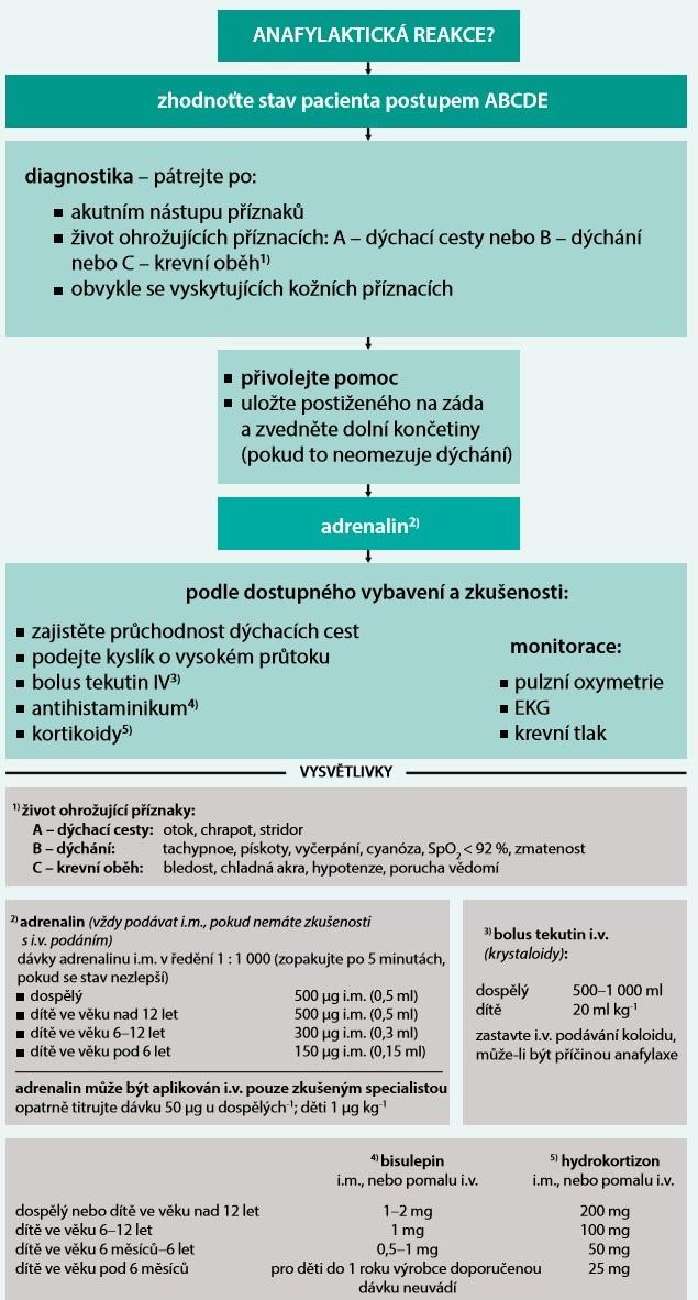 Schéma. Algoritmus léčby těžké anafylaktické reakce a anafylaktického šoku. Upraveno podle [66]