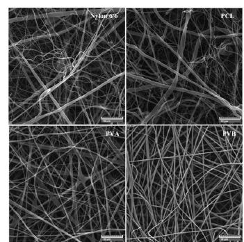 SEM images of nylon 6/6, PCL, PVA and PVB nanofiber scent carriers.