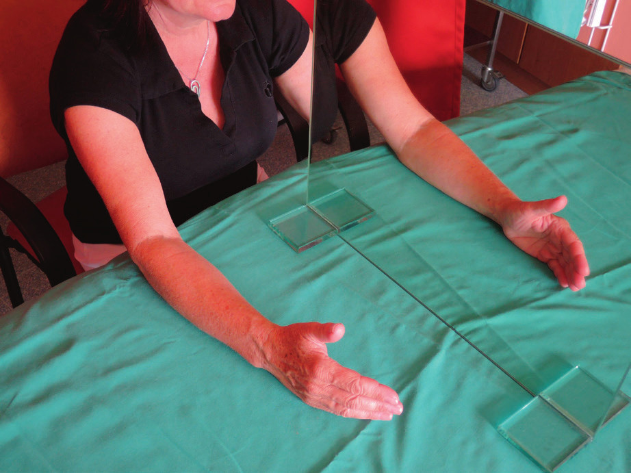 Pacient terapii zahajuje jednoduchými pohyby akra zdravé končetiny a pozoruje odraz končetiny v zrcadle.