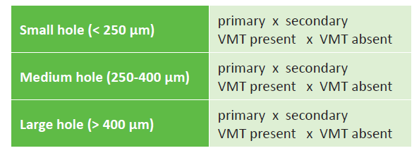 IVTS classification of macular hole