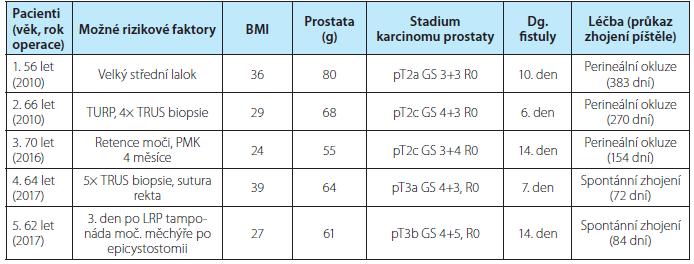 Charakteristiky pacientů, možné rizikové faktory vzniku píštěle, doba do zhojení<br> Tab. 1. Characteristics of the patients, possible risk factors, interval to healing of the fistula