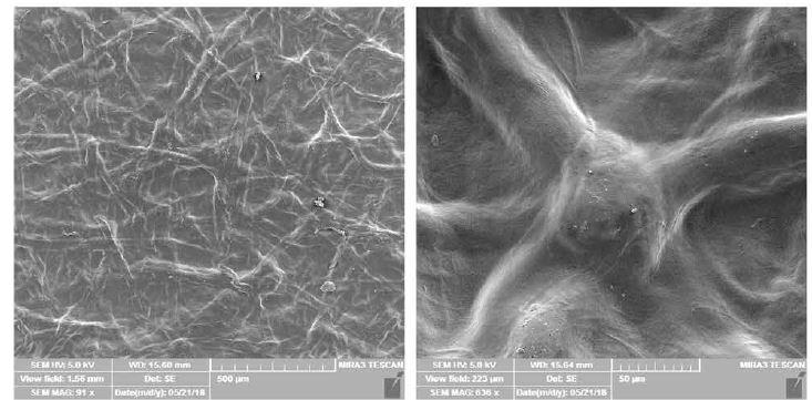 Mikroskopický vzhled povrchu připravených filmů – snímky z elektronového mikroskopu při přiblížení 500 μm (vlevo) a 50 μm (vpravo)